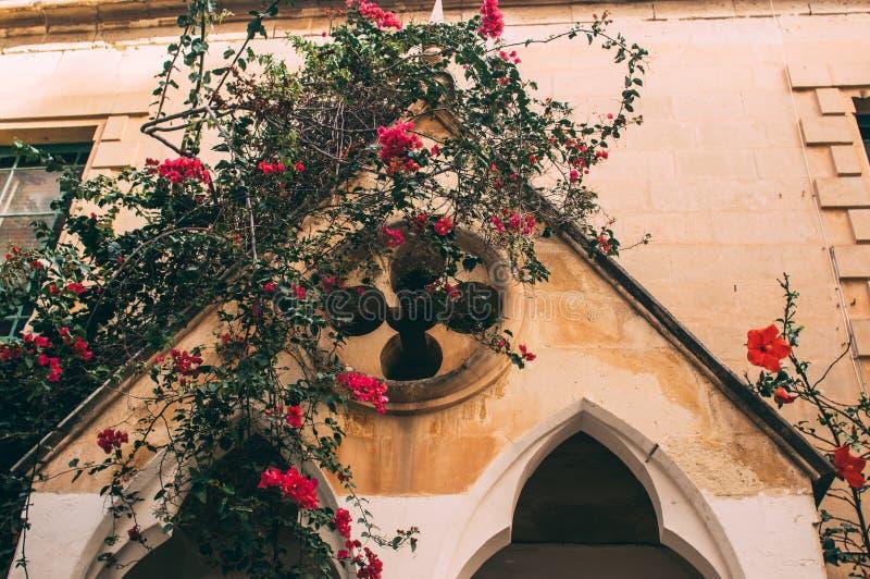 Opini?o da rua em Sliema, Malta fotografia de stock