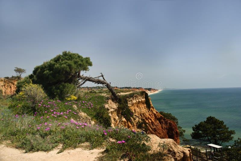 Opini?o do mar na costa portuguesa do Algarve imagem de stock royalty free