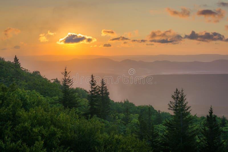 Opini?o do nascer do sol da conserva das rochas do urso em Dolly Sods Wilderness, floresta nacional de Monongahela, West Virginia fotografia de stock royalty free