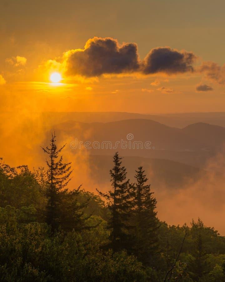 Opini?o do nascer do sol da conserva das rochas do urso em Dolly Sods Wilderness, floresta nacional de Monongahela, West Virginia imagem de stock