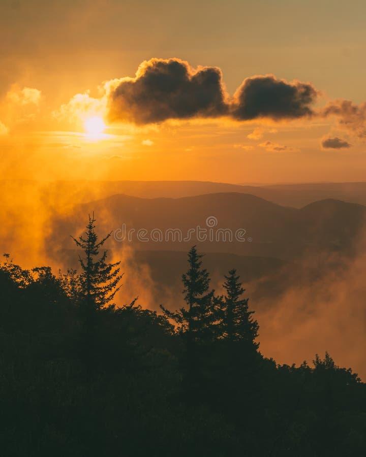 Opini?o do nascer do sol da conserva das rochas do urso em Dolly Sods Wilderness, floresta nacional de Monongahela, West Virginia imagens de stock