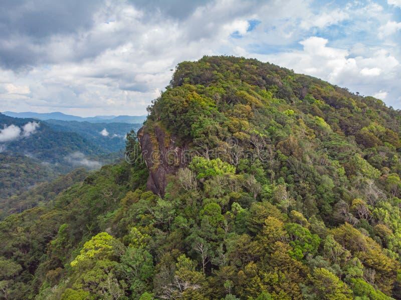 Opini?o a?rea de Sri Lanka da reserva natural da floresta tropical de Sinharaja na floresta antiga da selva das montanhas do por  imagens de stock