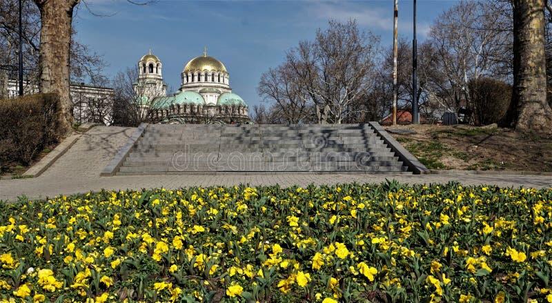 Opiniones de Alexander Nevsky Cathedral del santo en la primavera fotografía de archivo libre de regalías