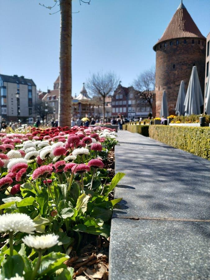 Opiniones de la calle de Gdansk imagen de archivo