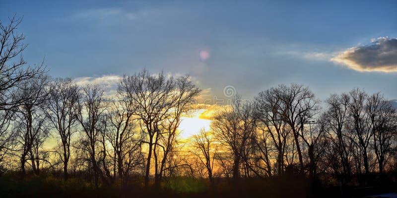 Opiniones de la puesta del sol de la oscuridad a través de ramas de árbol del invierno por Opryland a lo largo de Shelby Bottoms  fotos de archivo libres de regalías