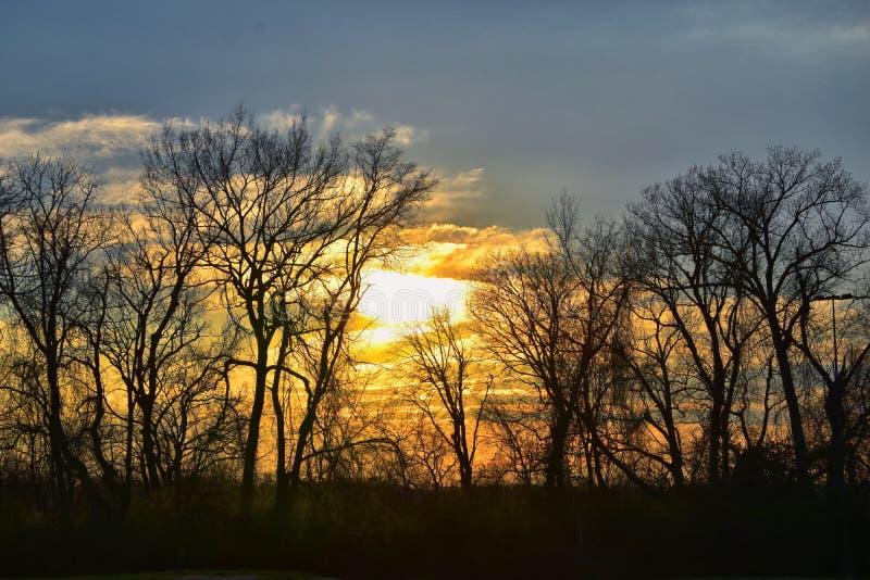 Opiniones de la puesta del sol de la oscuridad a través de ramas de árbol del invierno por Opryland a lo largo de Shelby Bottoms  fotografía de archivo libre de regalías