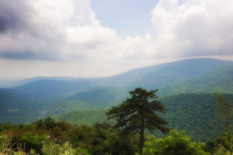 Opiniones de parque nacional de Shenandoah a lo largo de la impulsión del horizonte imagen de archivo
