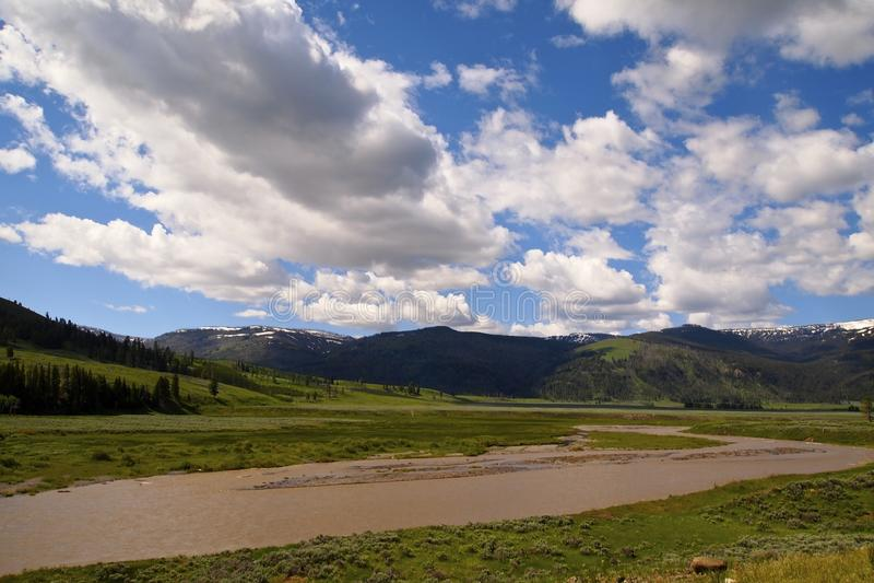 Opiniones de Yellowstone imagen de archivo