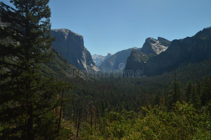 Opiniones maravillosas Forest From The Highest Part de una de las montañas del parque nacional de Yosemite Días de fiesta del via imagen de archivo libre de regalías