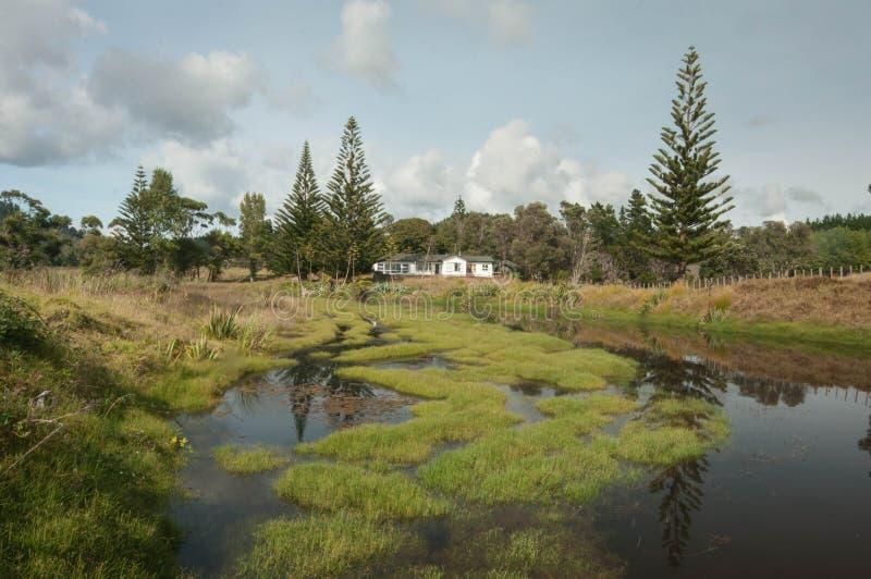 Opitobaai in Coromandel, Nieuw Zeeland stock afbeelding