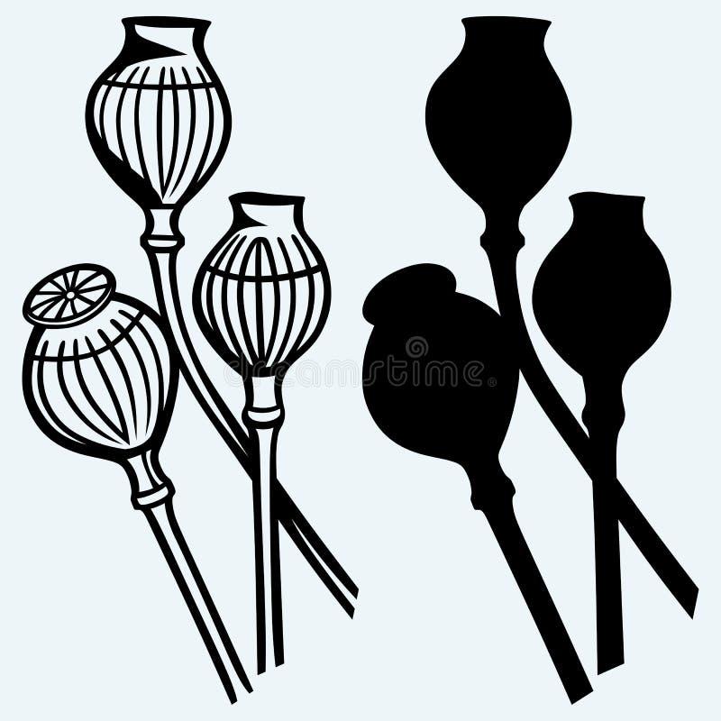 Free Opium Poppyhead Stock Photos - 59015493
