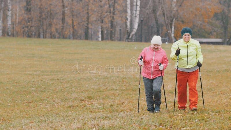 Opleiding voor bejaarden in de herfstpark - het noordse lopen onder de herfstpark royalty-vrije stock afbeelding