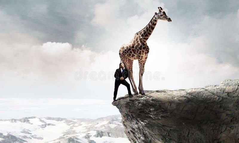 Oponente de combate do homem de negócios Meios mistos fotografia de stock