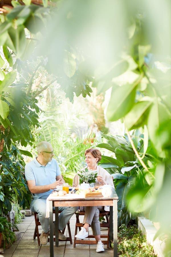 Opowiadać w domu ogródzie obrazy royalty free