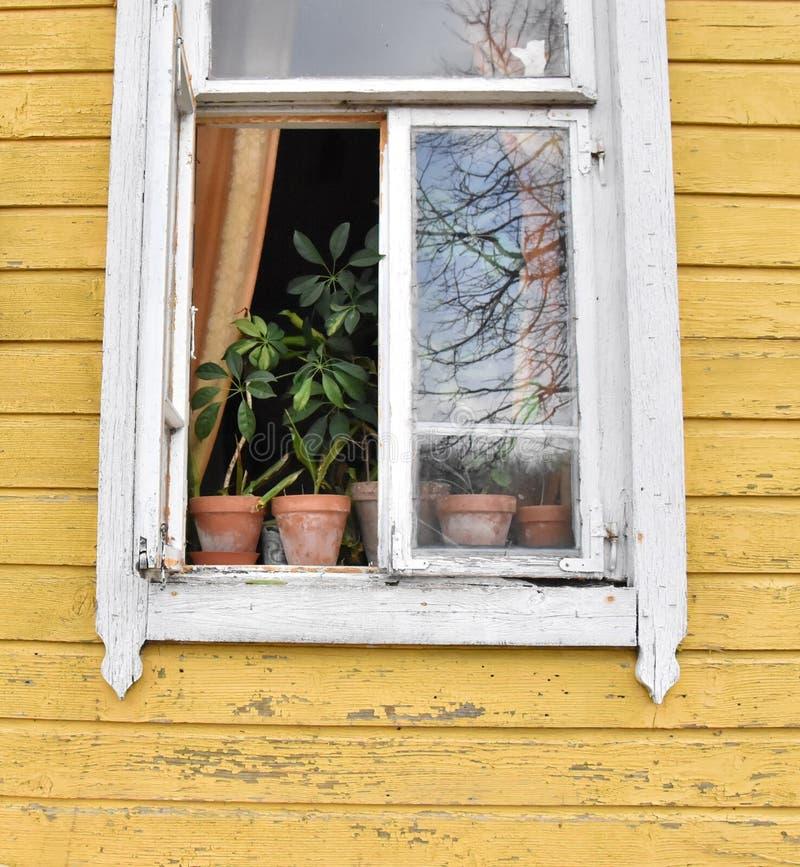 Oppened window stock image