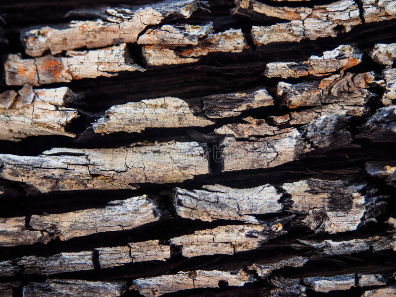 Oppervlakte oude houten textuur royalty-vrije stock fotografie