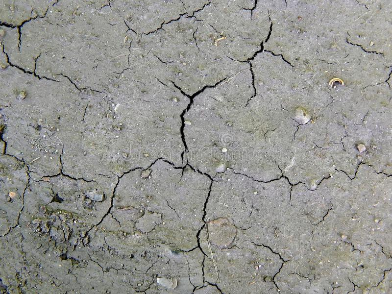 Oppervlakte van droog gebarsten aardeclose-up stock afbeeldingen