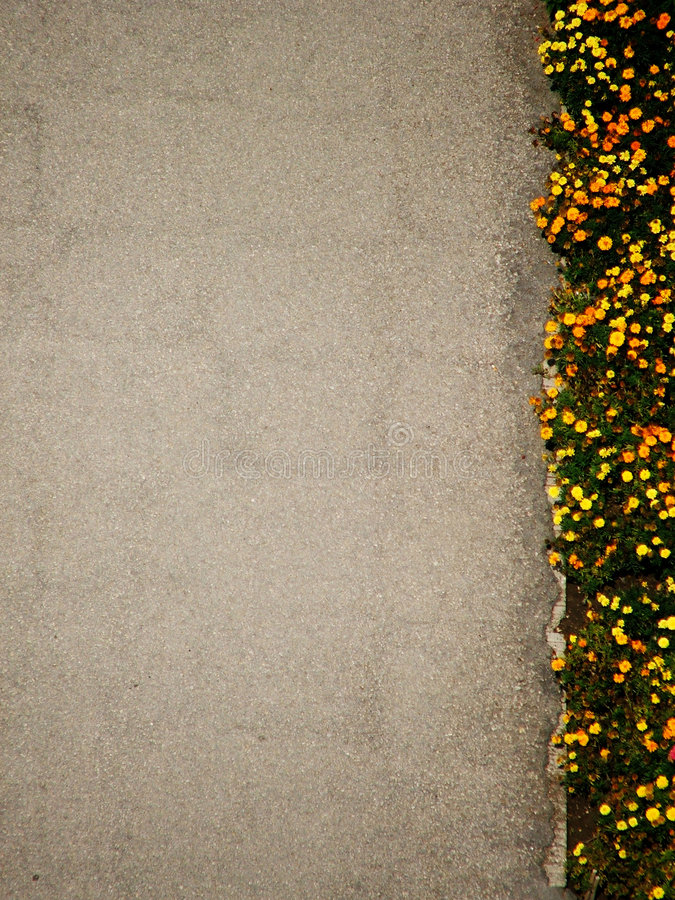 Download The Opposite Royalty Free Stock Photos - Image: 223318