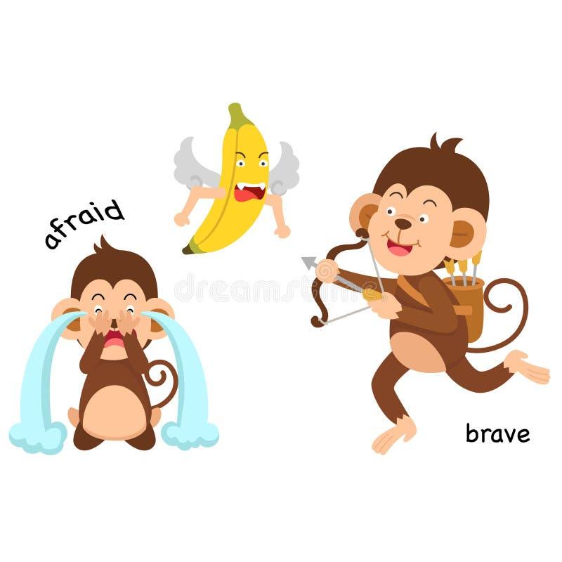 Opposite afraid and brave illustration. Opposite afraid and brave vector illustration stock illustration
