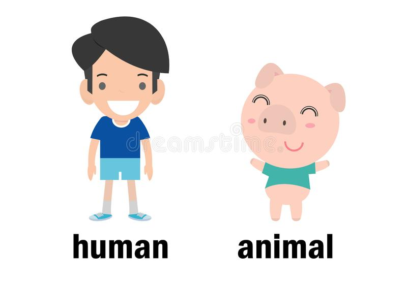 Opposite human and animal vector illustration, Opposite English Words human and animal vector illustration on white background.  royalty free illustration