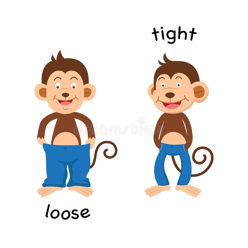 Opposite loose and tight. Vector illustration vector illustration