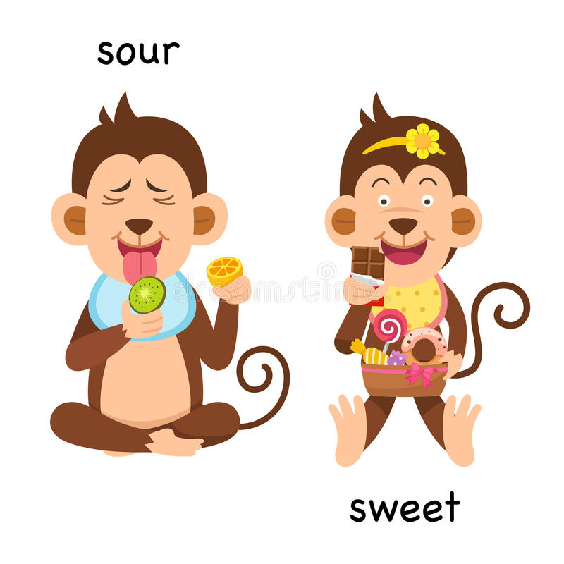 Opposite sour and sweet stock illustration