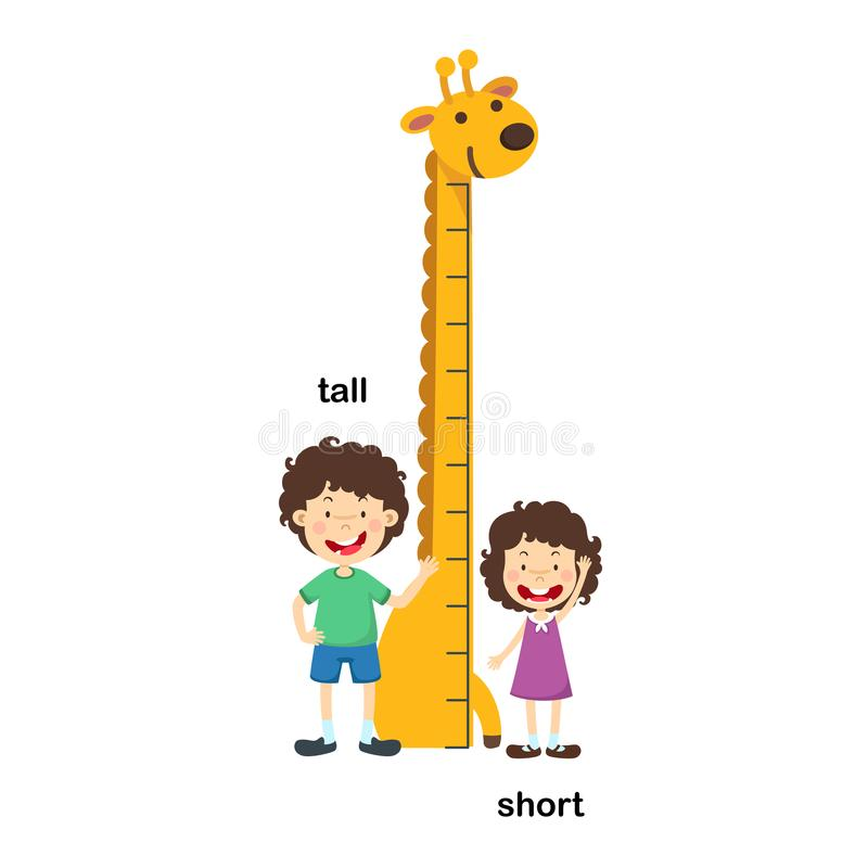 Free Opposite Tall And Short Royalty Free Stock Image - 122658246