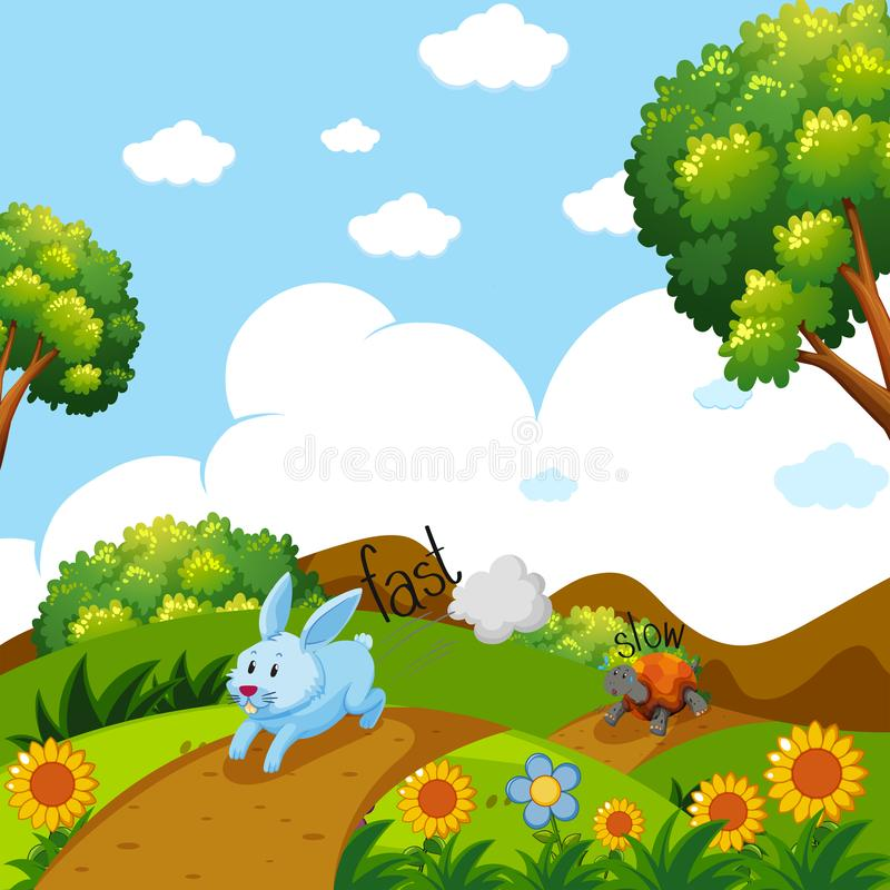 Opposite words for fast and slow with rabbit and turtle running. Illustration vector illustration