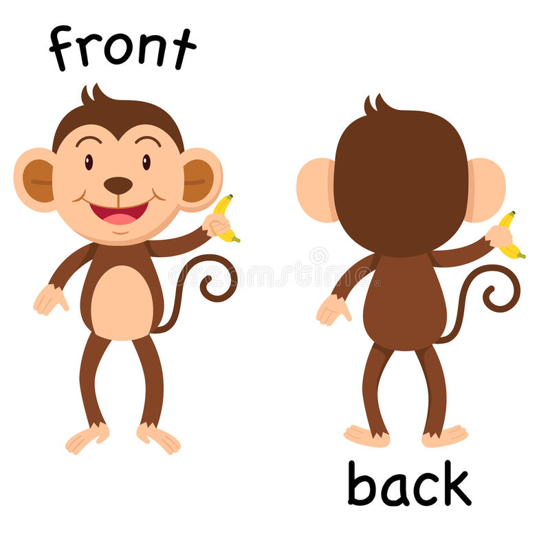 opposite words front and back vector stock vector illustration of rh dreamstime com back clip dog harness back clipping word