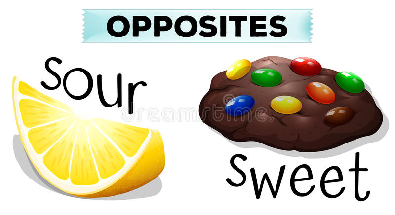 Opposite words with sour and sweet. Illustration vector illustration