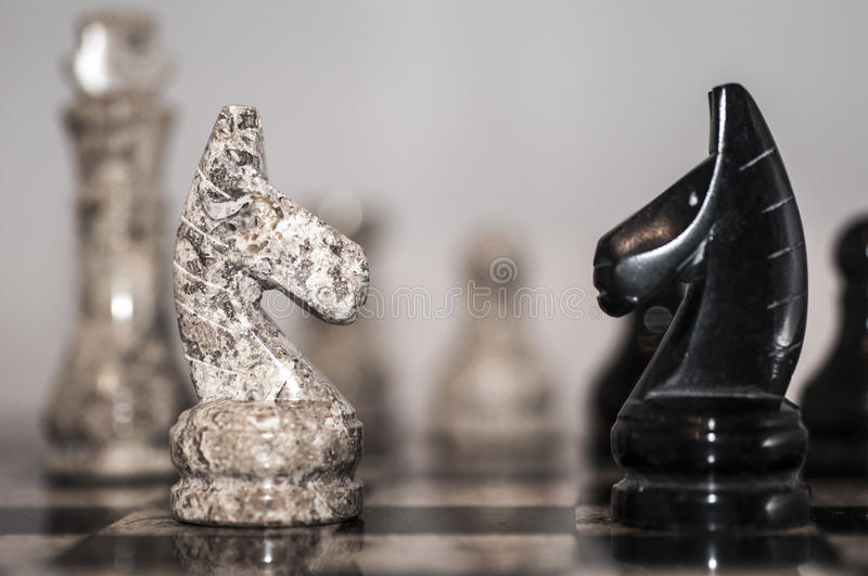 Opposition chess. Black and white chess knight, made of natural stone, stand opposite each other on the chessboard royalty free stock photo