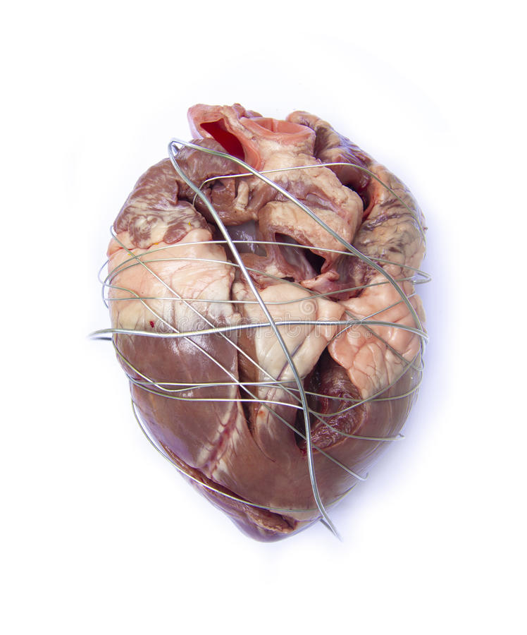 Oppression heart. Body human part stock images