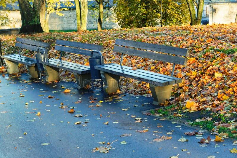 Opróżnia ławki w parku obraz stock