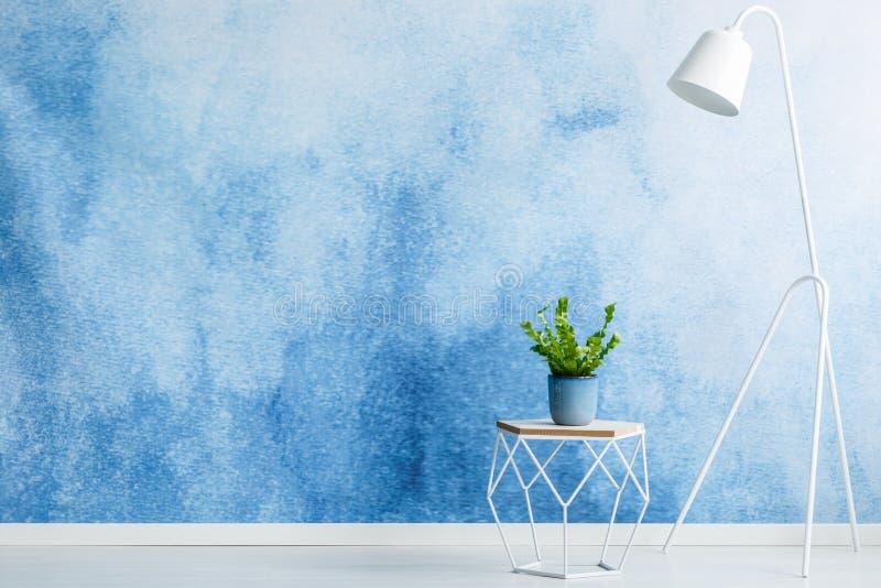 Opróżnia ścianę dla produktu plasowania, stolec z rośliną i białego l, fotografia royalty free