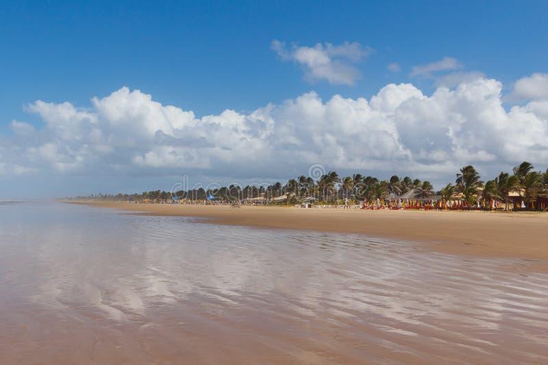 Opróżnia plażowego Aruana, Aracaju, Sergipe stan, Brazylia fotografia royalty free