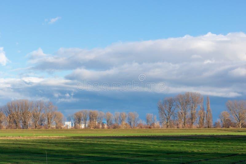 Opróżnia pola w zimie w wsi natura w Frankenthal, Niemcy - zdjęcie stock