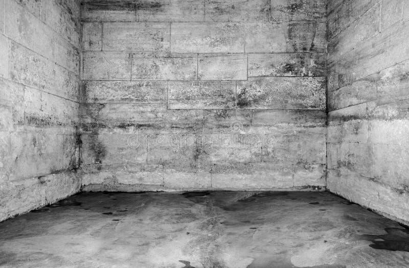 Opróżnia starego obdrapanego betonowego pokój zdjęcia royalty free