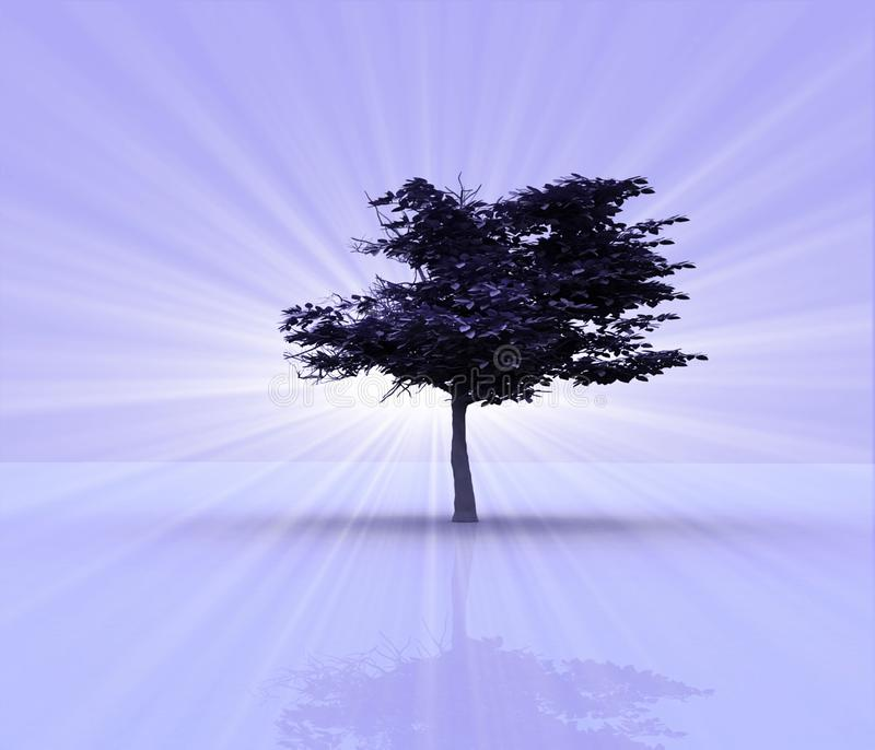 opromieniony drzewo ilustracja wektor