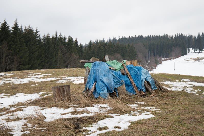Opslag van hout tijdens de winter in het land stock afbeelding