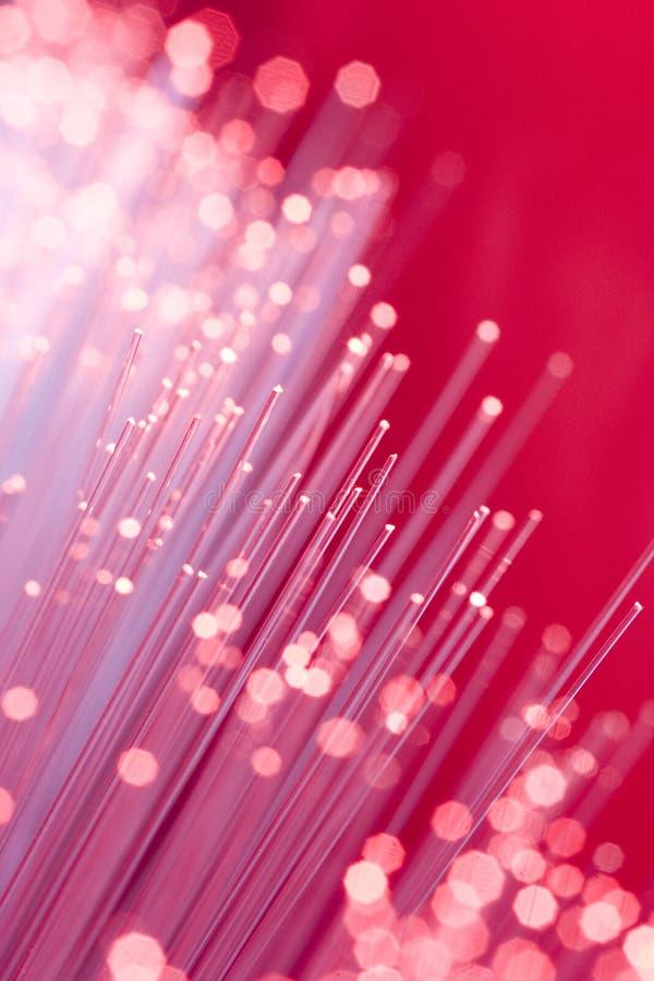 Free Optical Fibers Stock Image - 1011961
