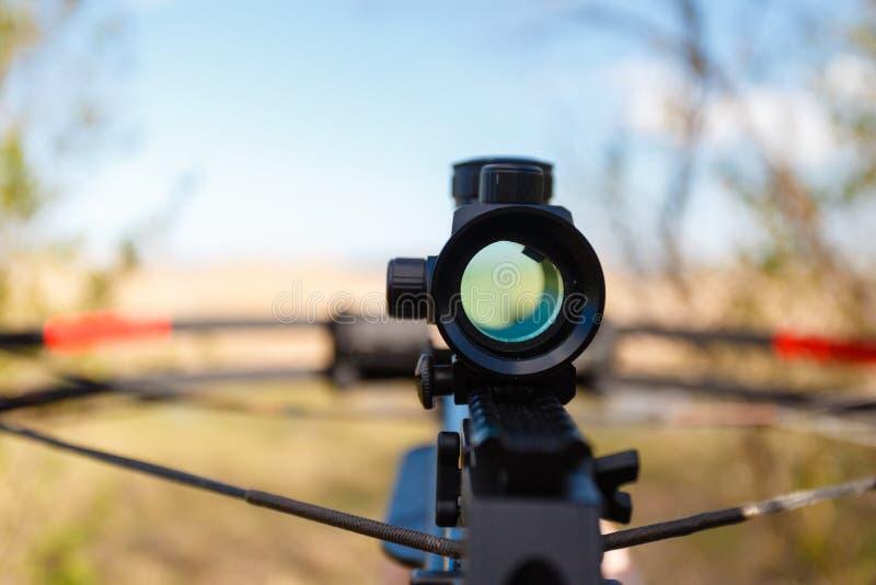 Optical sight crossbow stock photo