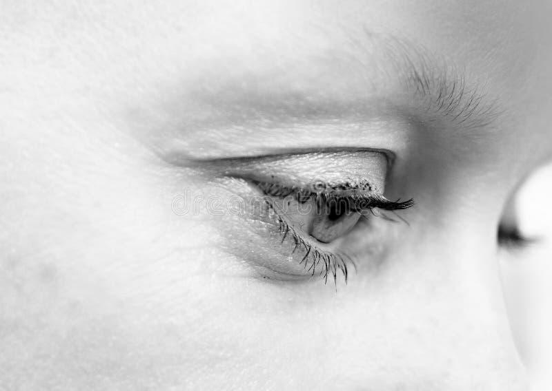 optician immagini stock libere da diritti