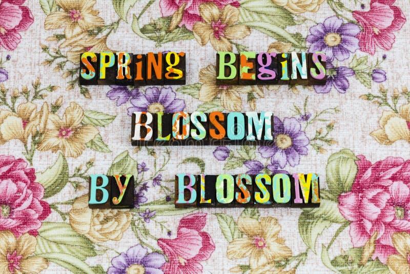 Optimismo del futuro de la naturaleza del flor de la primavera imágenes de archivo libres de regalías