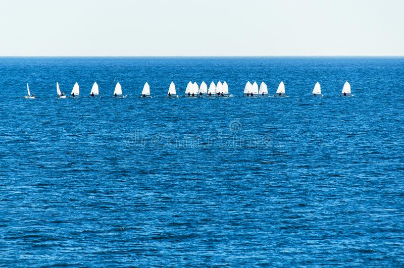 Optimist sailboat during a training. Session in the sea stock photo