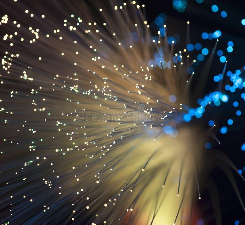 Optisk nätverkskabel för fiber fotografering för bildbyråer