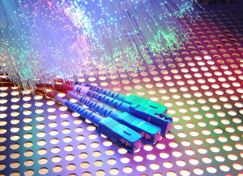 Optisk nätverkskabel för fiber royaltyfri bild