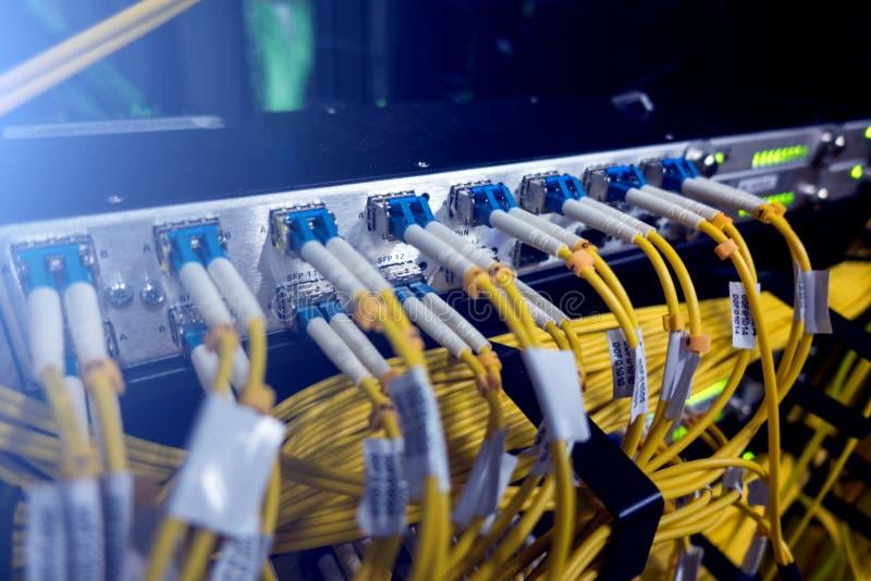 Optisk server kommutator Blinkande ljus optisk fiber hörbart Avskiljer datoren i en kugge på den stora datorhallen närbild, royaltyfri foto
