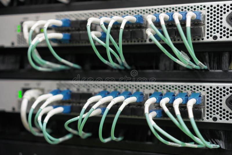 Optiska fiberkablar förbindelse i datorhall arkivbild