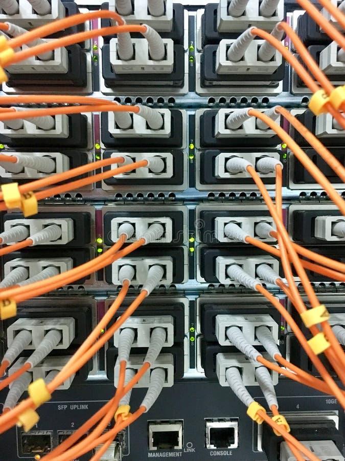 Optiska kablar för fiber med kontaktdon i grupp arkivfoton