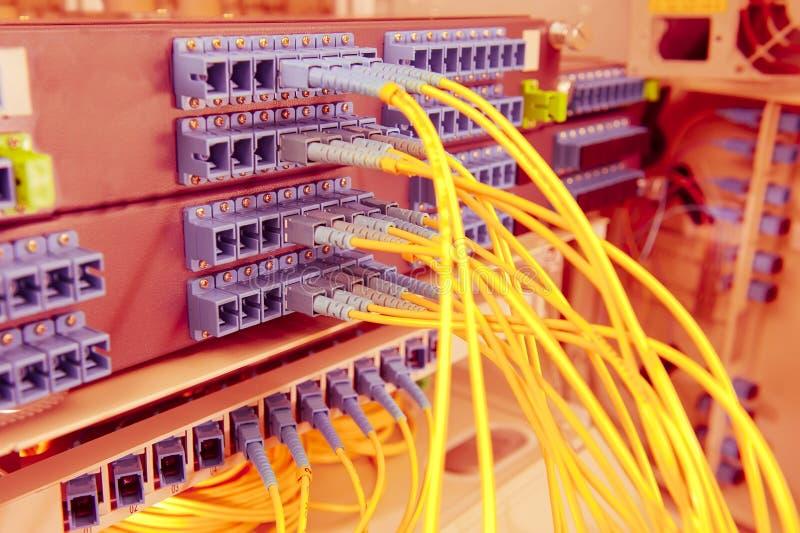 Optiska nätverkskablar och serveror arkivfoto